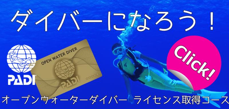 PADI ダイビングライセンス取得コース